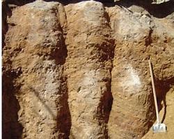 Грунто-цементная свая